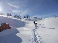 Camminando sulla neve