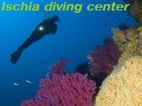 Ischia Diving