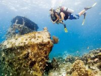 Diving with guide
