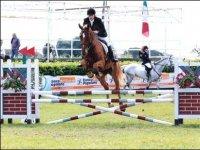 Abbonamenti e lezioni di equitazione a Norma