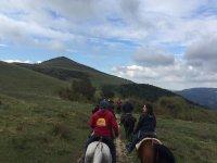 Passeggiate a cavallo in gruppo
