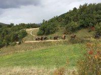 Passeggiate nei campi abruzzesi