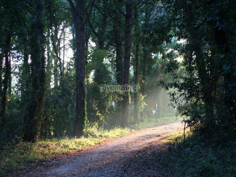 sentiero del parco nazionale del circeo