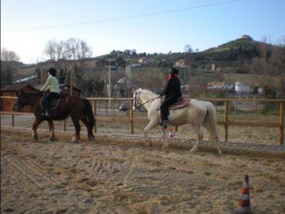 Circolo Ippico 3 Cavalli