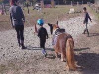 Un bimbo con il suo pony