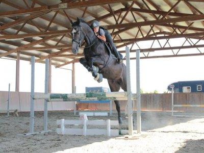 Centro Ippico Pony Club Le Rondini