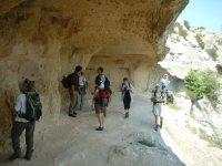 Escursioni di gruppo