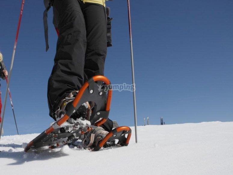 ciaspole un nuovo modo per vivere la neve