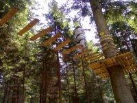 Il Parco Avventura tra gli alberi
