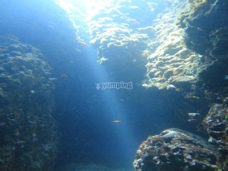 Luce dalla superficie/the siphon