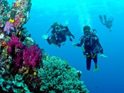 Trekking&Paddles Diving