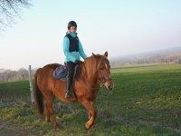 In sella a cavallo