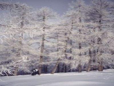 Guide Alpine Gran Paradiso Canavese Ciaspole
