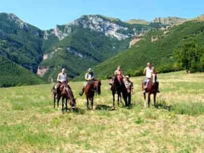 Agriturismo Le Querce Passeggiate a Cavallo