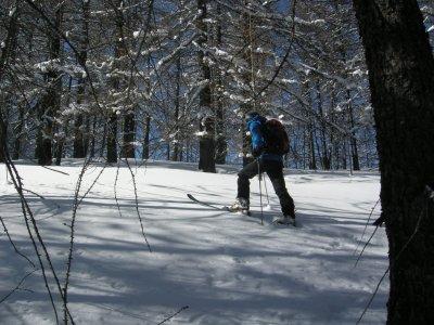 Scialpinismo a Bardonecchia intera giornata