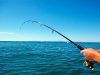 La canna da pesca