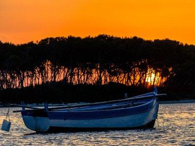 GPNAUTICAGALLIPOLI  Escursione in Barca