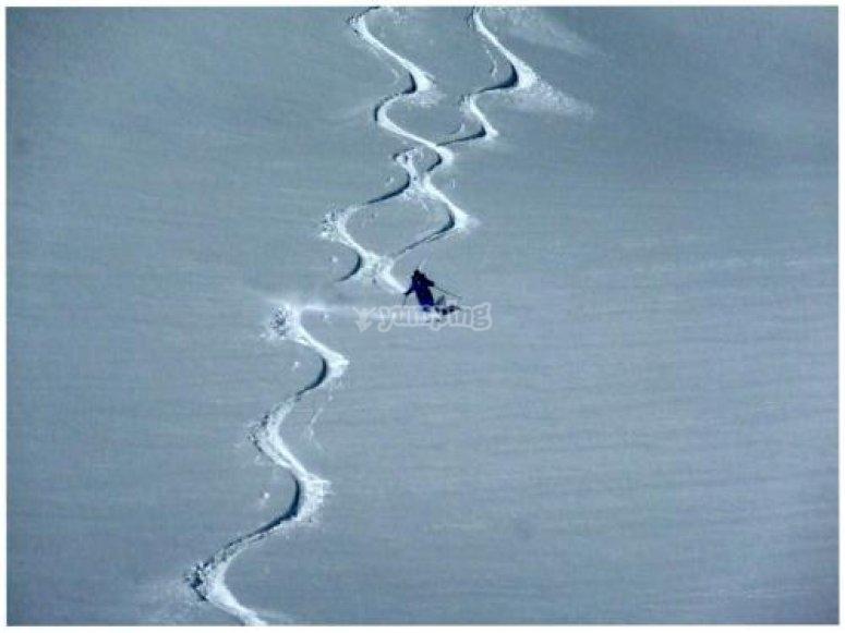 Tracce sulla neve