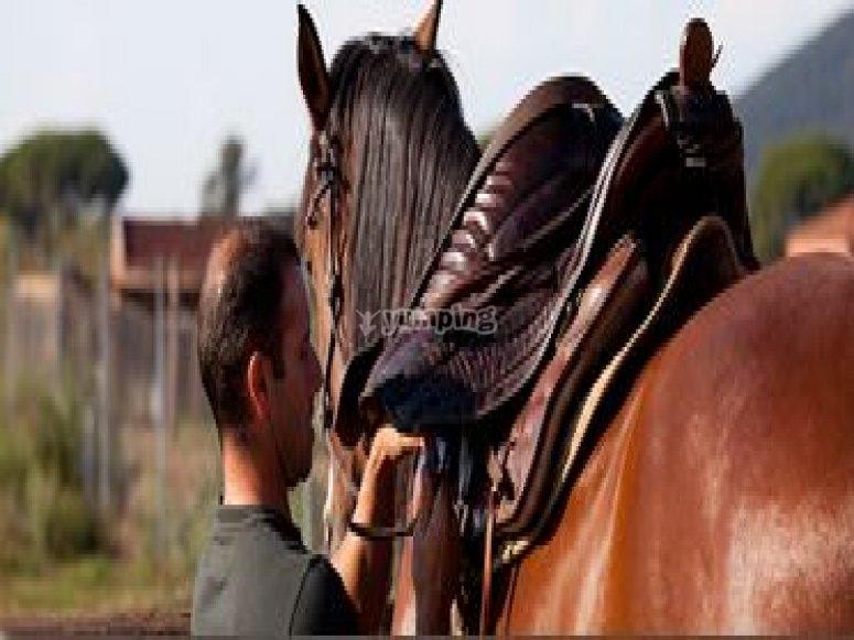 Giornata a cavallo Toscana