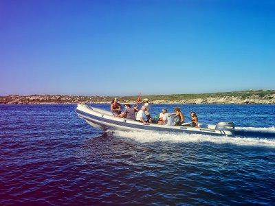 Archeodiving Escursione in Barca
