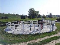 Esercizi alla Giostra cavalli