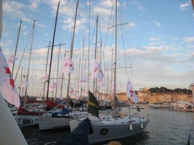 Sail Activity Noleggio Barche