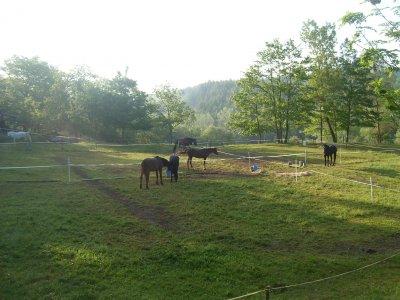 Tappa alloggio cavalieri e cavalli in Toscana