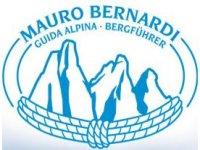 Mauro Bernardi