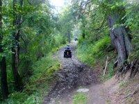 Escursioni nei boschi