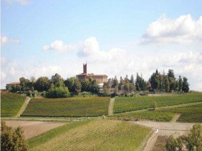Il Castello di Uviglie