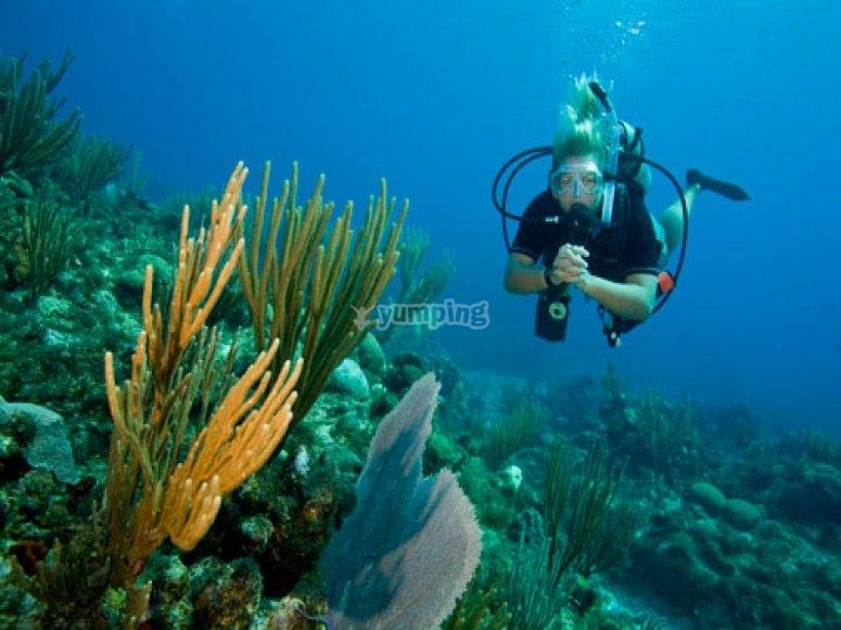 Corsi subacquei como