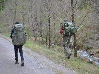 Walking nella natura