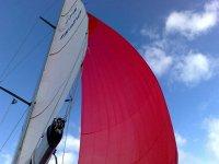 Navigando a vela