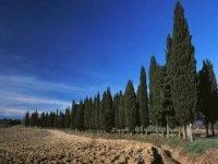 La campagna intorno a sant'agata