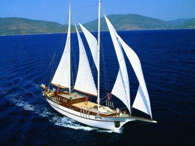 Blue Paradise Yacht Charter Noleggio Barche