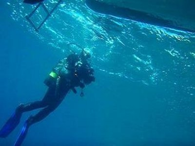 All Dive Rei Diving Service