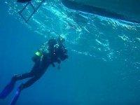 magnificent dives