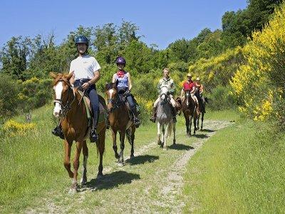 Finesettimana a cavallo Parco della Maremma