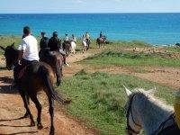 Escursioni a cavallo sul mare