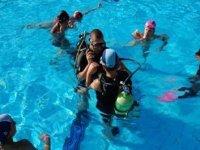 Swimming Pool Tests