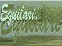 Equilari