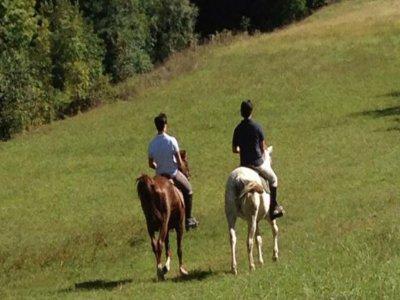 ProAlps Passeggiate a Cavallo