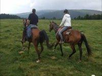 Alto Adige a cavallo