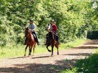 Horse back riding con ProAlps