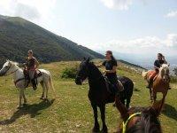 In gruppo con i cavalli