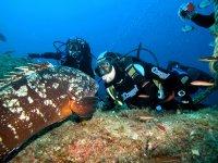 Underwater Basin