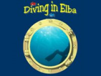 Diving in Elba