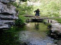 Passeggiata nella Natura