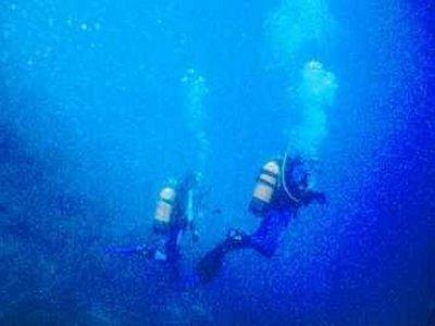 Sud-Est Diving