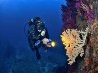 esplorazione subacuea